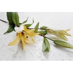 Lilia Gałąź 2 kwiaty 81 cm