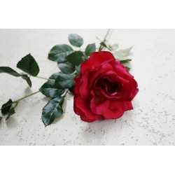 Róża gałązka czerwona 50 cm