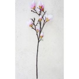 Magnolia gałąź różowa 100 cm