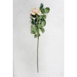Róża pojedyncza 70 cm