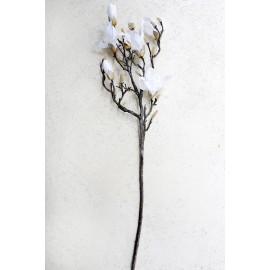 Magnolia gałąź biała 105 cm