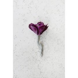 Sukulent Rock Lily 502