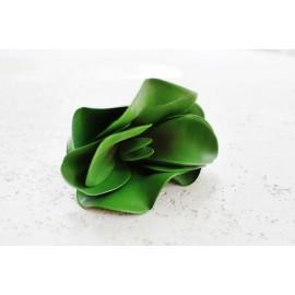 Sukulent Desert rose 625