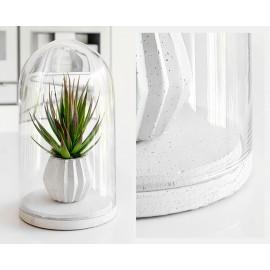 Kolekcja kloszy szklanych z podstawą betonową COVER